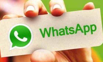 Work WhatsApp Group: Is it a Hero or a Foe?